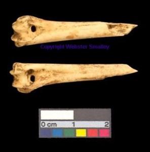 Pierced bone