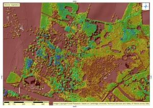 lidar-shorne-vegetation-comp